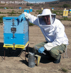 Me at the Moudros town apiary