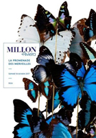 DomiH - Millon Riviera