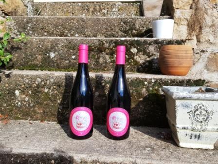 Beaujolais-Villages Primeur 2014