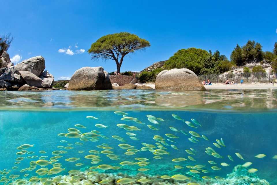 Location Vacances Porto Vecchio Pas Cher 20137 En Corse Du Sud