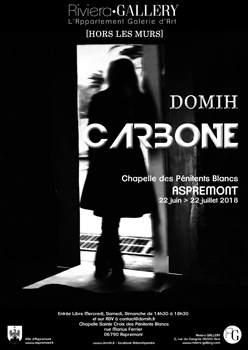 DomiH Exposition CARBONE