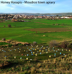 Honey Hasapis - Moudros town apiary