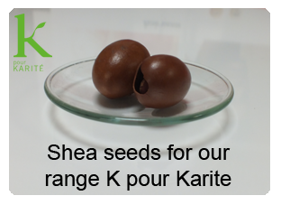 shea seeds