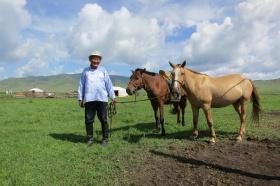 Nomade de Mongolie avec ses chevaux devant sa yourte