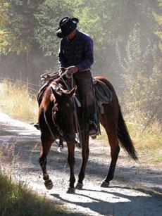 Voyage à cheval