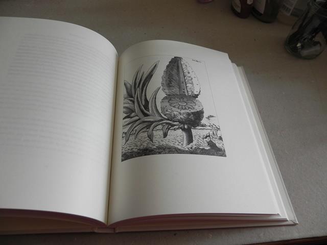 Description de l'image