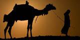 Adventure Holidays Egypt