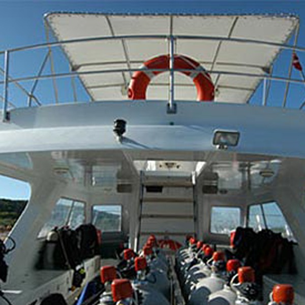 Dive Boat Ship