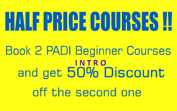 Padi Courses Promotion