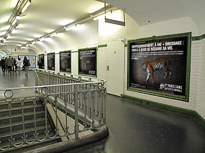 paris-france-cirque-sans-animaux-campagne-3.jpg