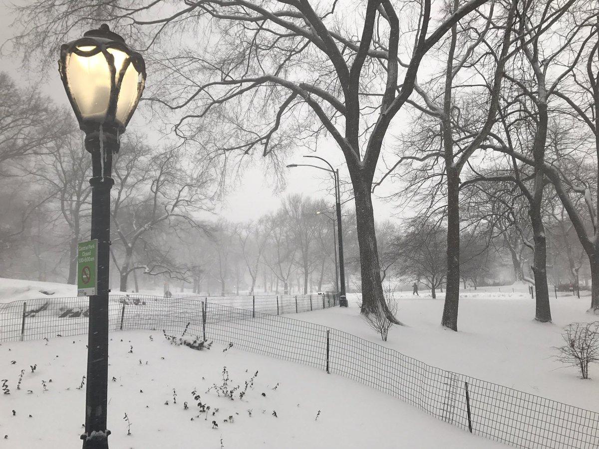 Centra Park sous la neige