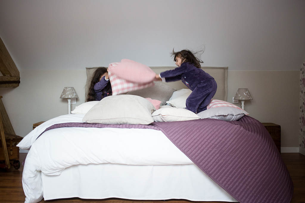 les olivanies chambres d 39 h tes monthelon pr s d 39 epernay en champagne. Black Bedroom Furniture Sets. Home Design Ideas