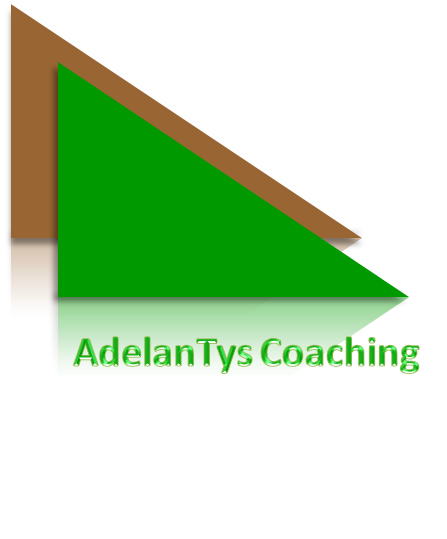AdelanTys Coaching Supervision