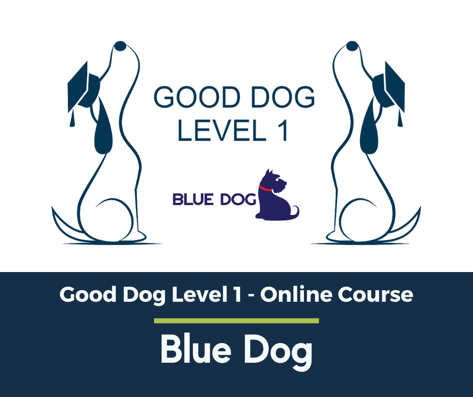 Good Dog Level One Online (1) (1).png