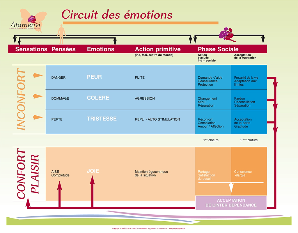 circuit-des-emotions.png