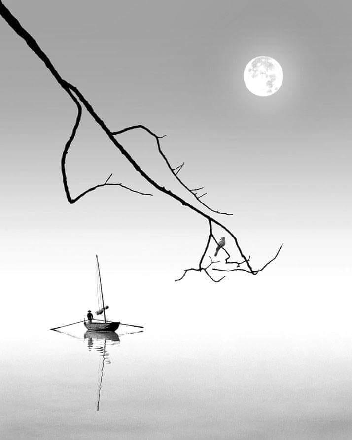 lune netbjpeg