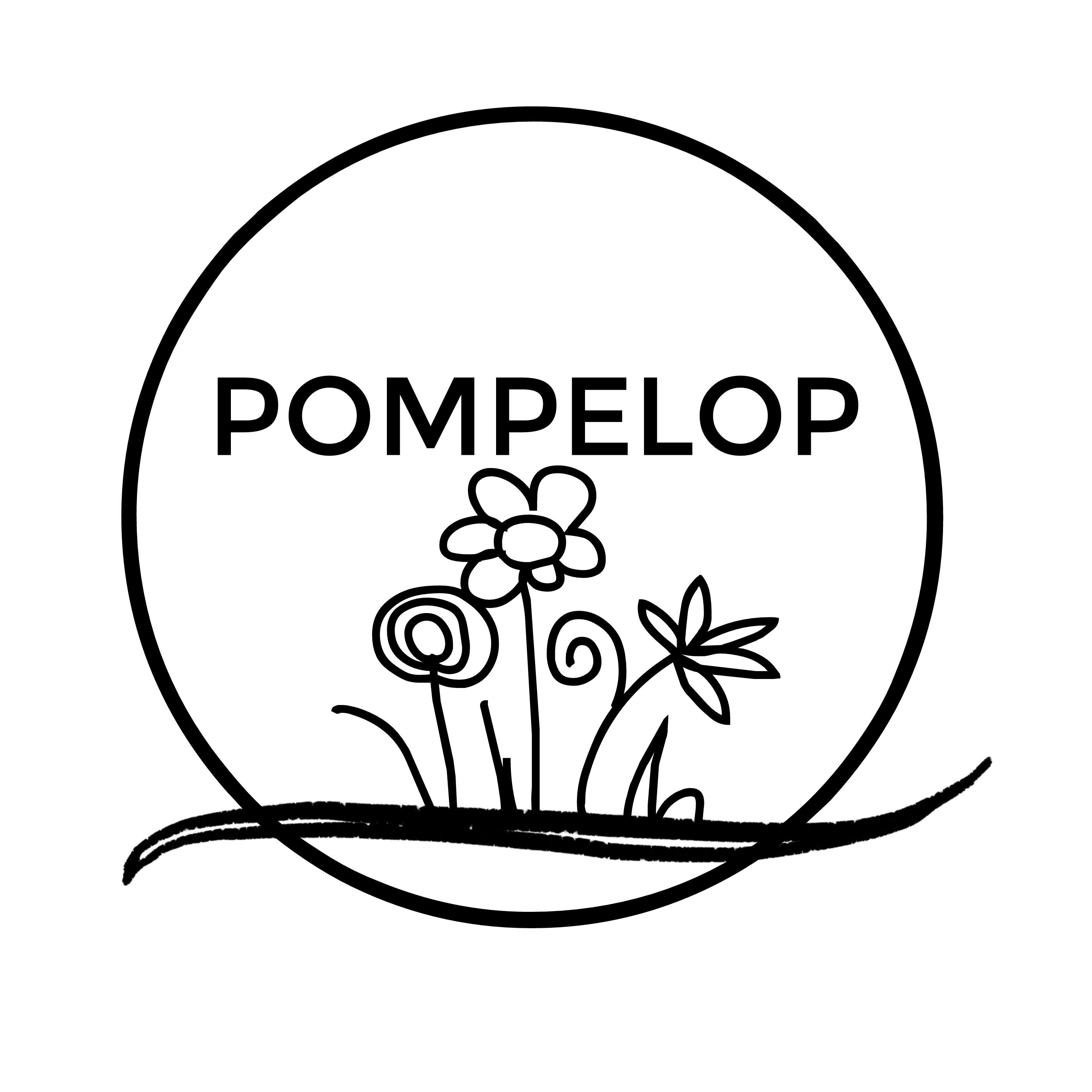 20180203103731 - pompelop letjpg