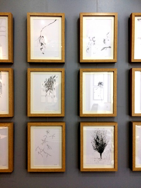 dessins - exposition MEANDRES