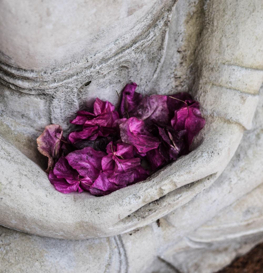 bouddha-fleurjpg